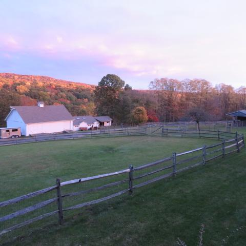 farm, field, barn,