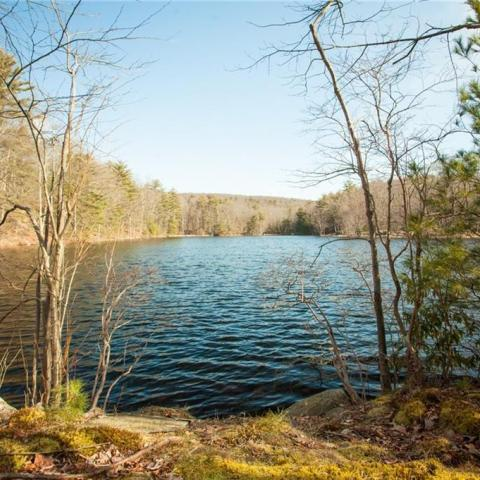 cabin, lake, rural, country,