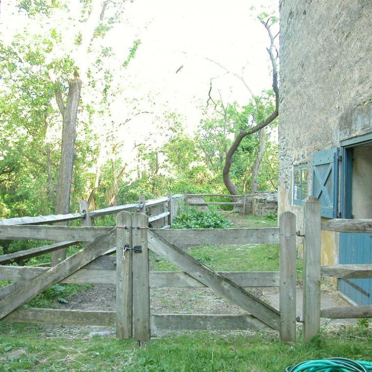 farm, barn, pool, rustic,