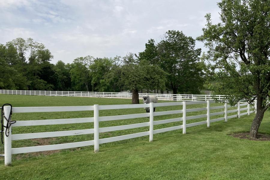 farm, stable, horse, pool, shingled, deck, kitchen, upscale,