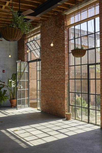 industrial, light, concrete, garden, textured walls,