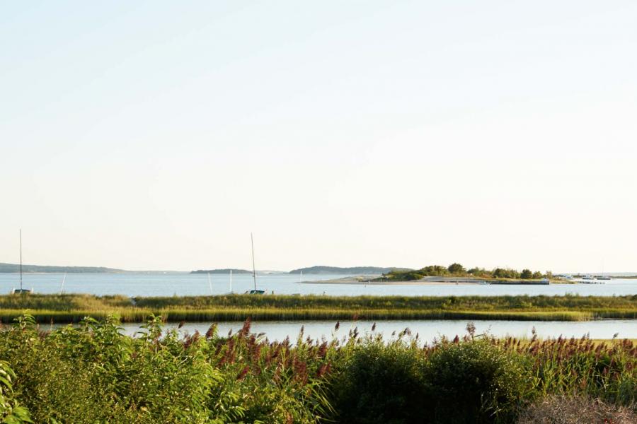 Hamptons, rustic, deck, pool, water,
