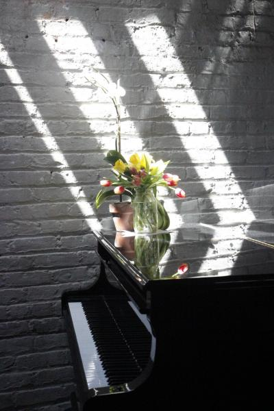 loft, bohemian, funky, textured walls, wood, piano, rooftop,