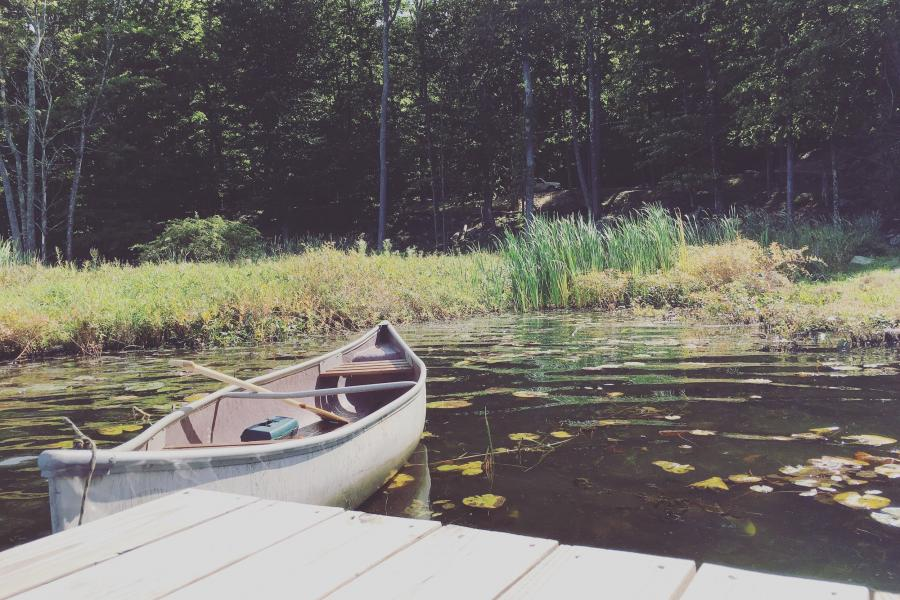 cabin, wooded, lake, water, rural, country,