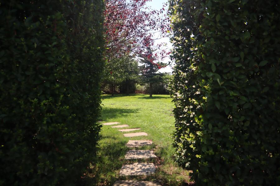 contemporary, suburban, kitchen, garden,