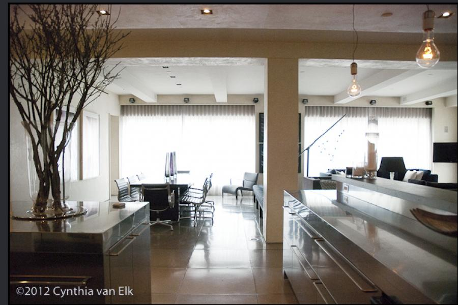 apartment, contemporary, upscale, modern, rooftop, kitchen, bathroom, apartment, penthouse, modern